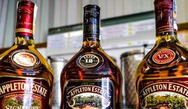 Koňaky, Whisky nebo Rumy - to vše u nás ve vinotéce ve Slavičíně